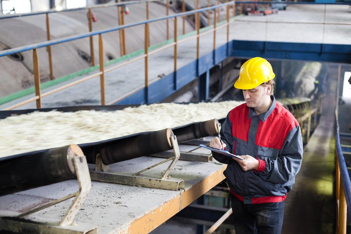 Sugar factory conveyor belt