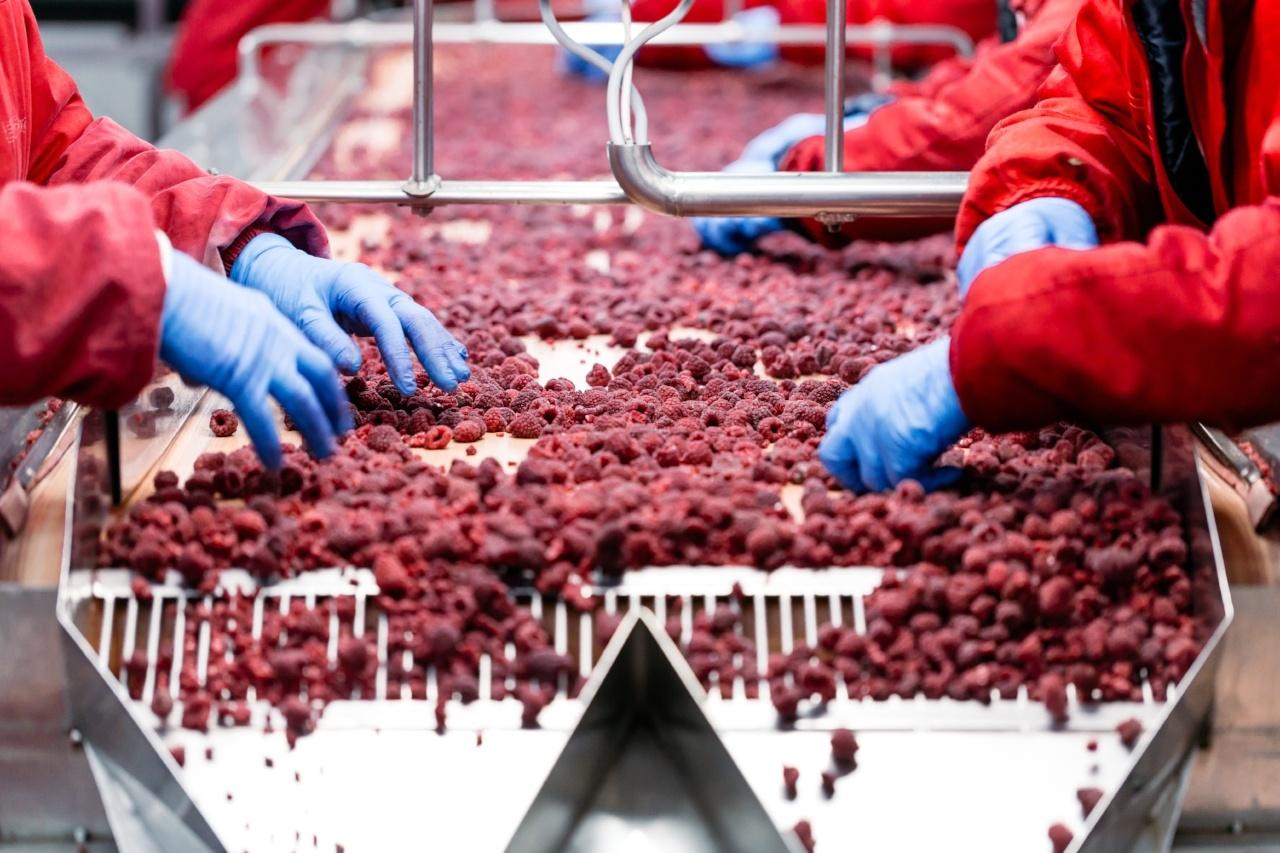Frozen food industry_iStock-835832944-289033-edited