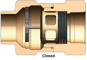 Dixon-safety-check-valve-closed