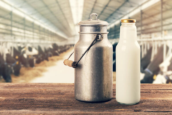 Fresh-milk-bottle-and-can-on-the-table-in-cowshed