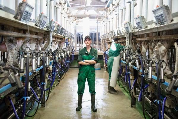 Woman-worker-portrait-in-the-modern-farm