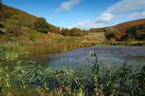 Cwmtillery-reservoir